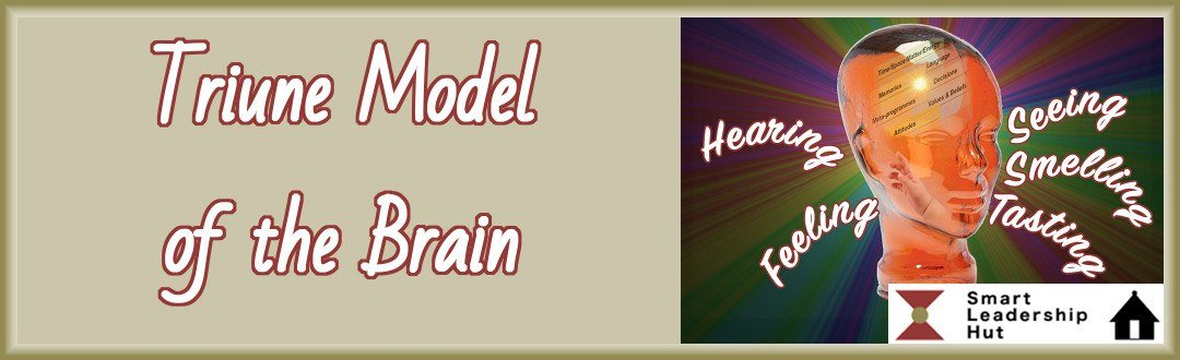 Triune model of the brain